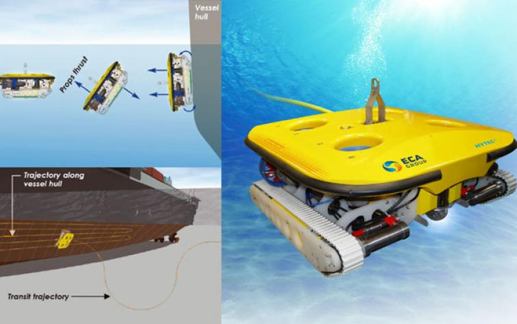 Thickness Measurement by ROV